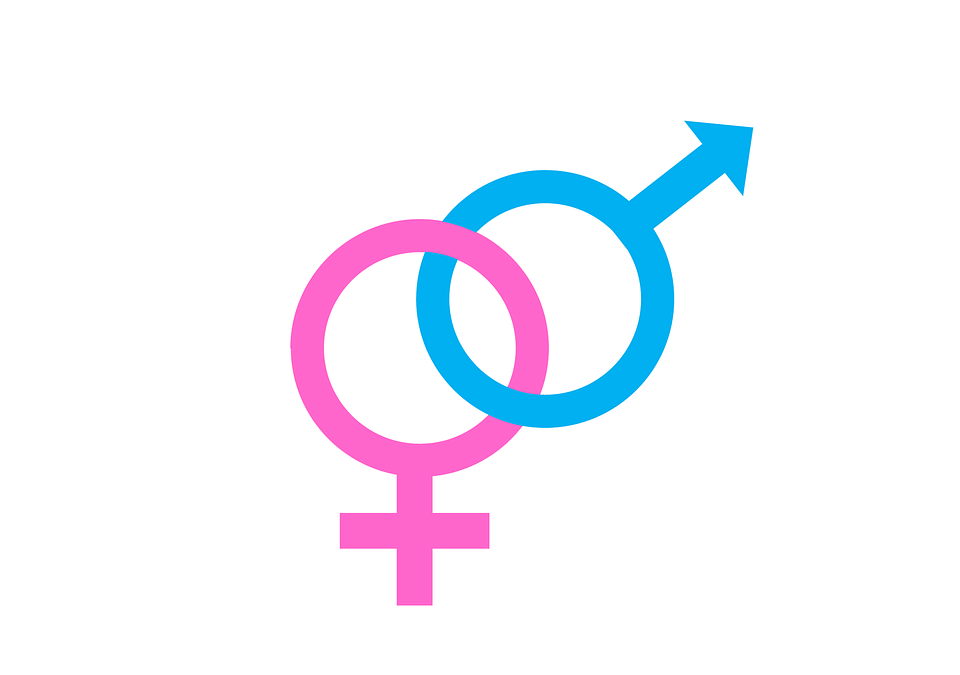 Gender Professional Equality Index